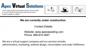 Apex Virtual Solutions- Small Business Service Provider