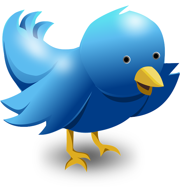 Get Ready To Do More with Twitter - Marketing